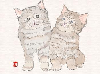 110115猫(テクスチャー).jpg