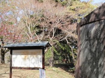 さくら山(一茶の俳文碑).jpg