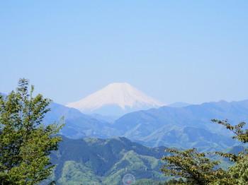 もみじ台(富士山).jpg