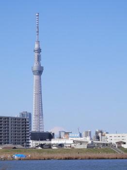 スカイツリーと富士山.jpg