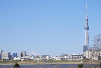 スカイツリーと富士山2.jpg