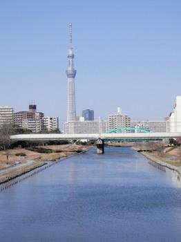 スカイツリー(ふれあい橋).jpg