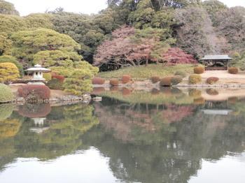 上の池2.jpg