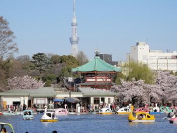 上野公園1.jpg