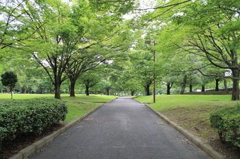 亀戸中央公園.JPG