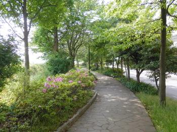 亀戸九丁目緑道公園.JPG