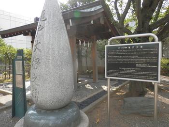 亀戸大根の碑.JPG