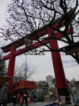 亀戸天神社1.jpg
