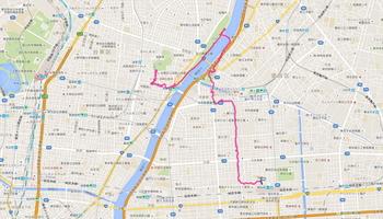 今日の散歩道.JPG