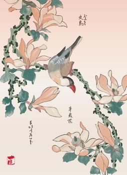 北斎の文鳥と辛夷花.jpg