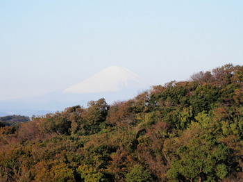 半僧坊(富士山).jpg