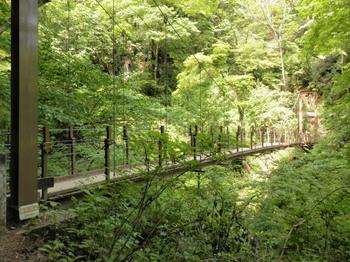 四号路(吊り橋).jpg
