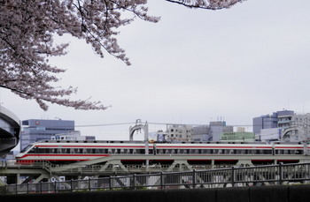 墨堤桜まつり5.jpg
