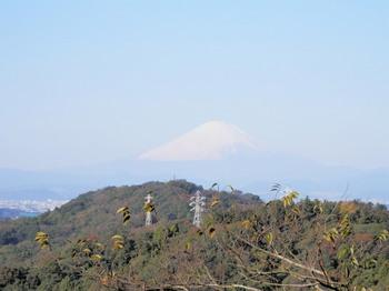 天園峠(富士山).jpg