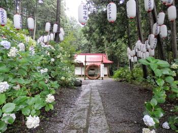 太平神社(あじさい祭り)2.jpg