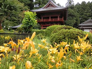 太平神社(あじさい祭り)5.jpg