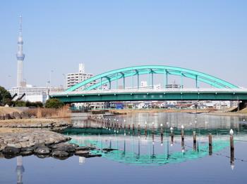 旧中川(スカイツリーと江東新橋).jpg