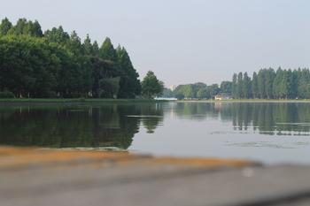 水元公園3.JPG