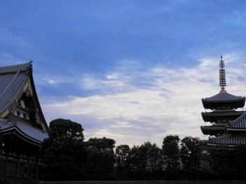 浅草寺(裏手の庭から).jpg