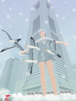 海鳥達の風.jpg