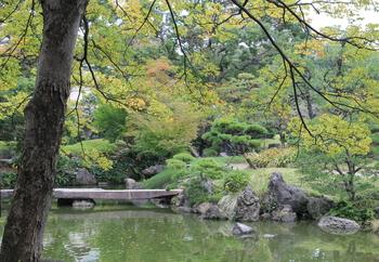 清澄庭園2.JPG