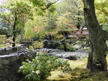 湯島天神(庭園).jpg