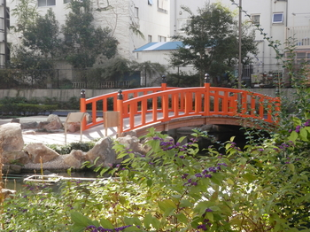 竪川河川敷公園2.JPG