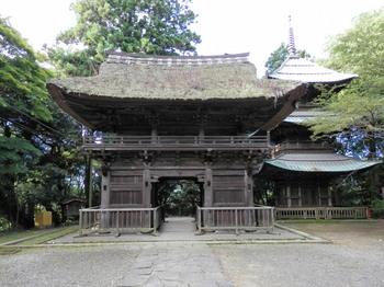 西明寺(山門と三重塔).jpg