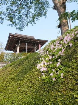 観音寺.JPG