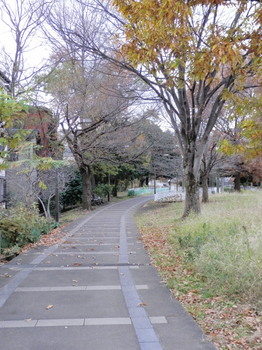 赤羽緑道公園2.jpg