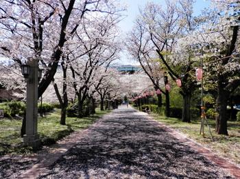辰巳の森緑道公園3.jpg
