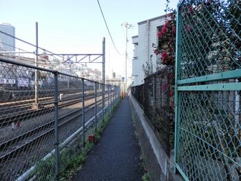 道無き道(大塚駅~池袋駅).jpg