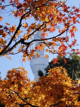 隅田公園3.jpg
