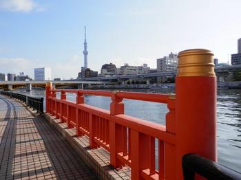隅田川テラス1.JPG