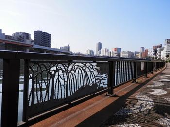 隅田川(柳橋フェンス).JPG