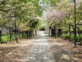 香取神社1.jpg