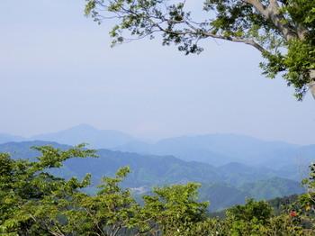 高尾山(頂上).jpg