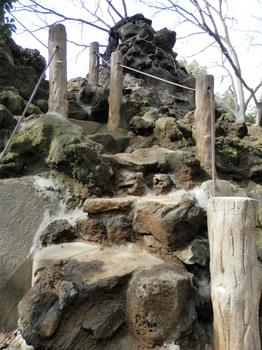 鳩森八幡神社(富士塚見上げると).jpg