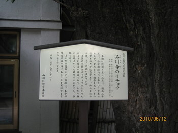 IMG_3461.JPG